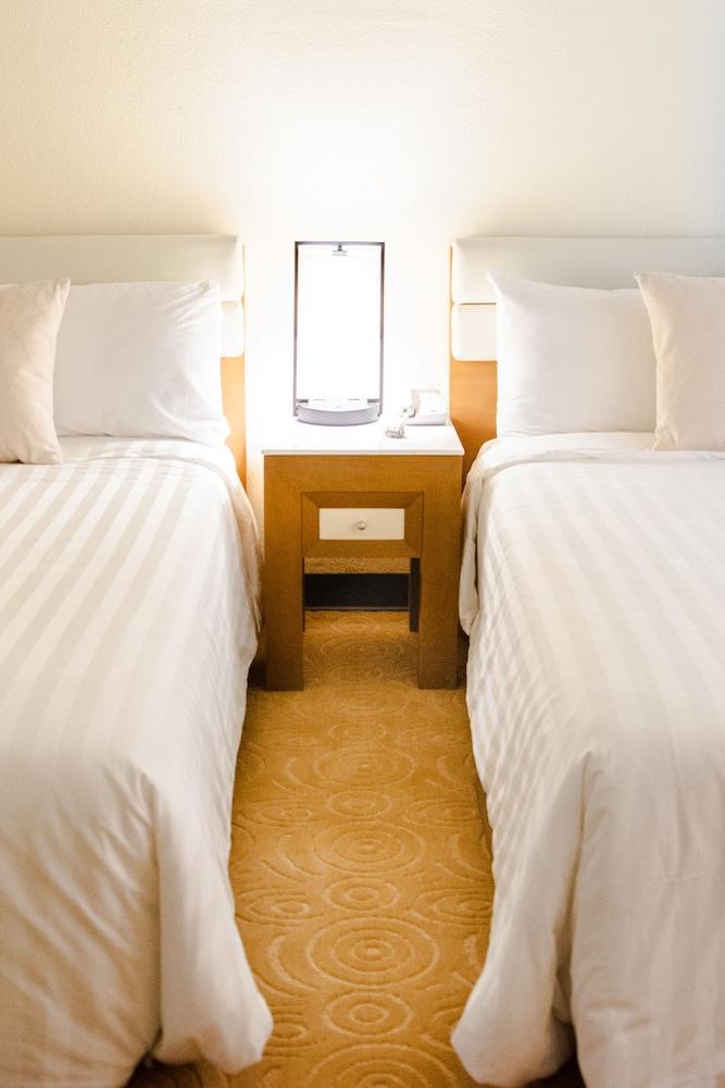 ワン パシフィック ホテル