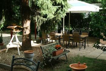 布魯徹維斯飯店餐廳 Hotel Restaurant Bruchwiese