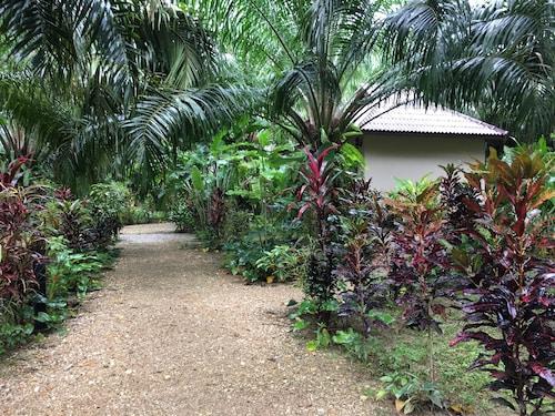 . Khao Sok Palm Garden Resort