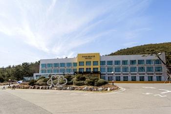 パインビーチ ホテル ポハン (Pinebeach Hotel Pohang)