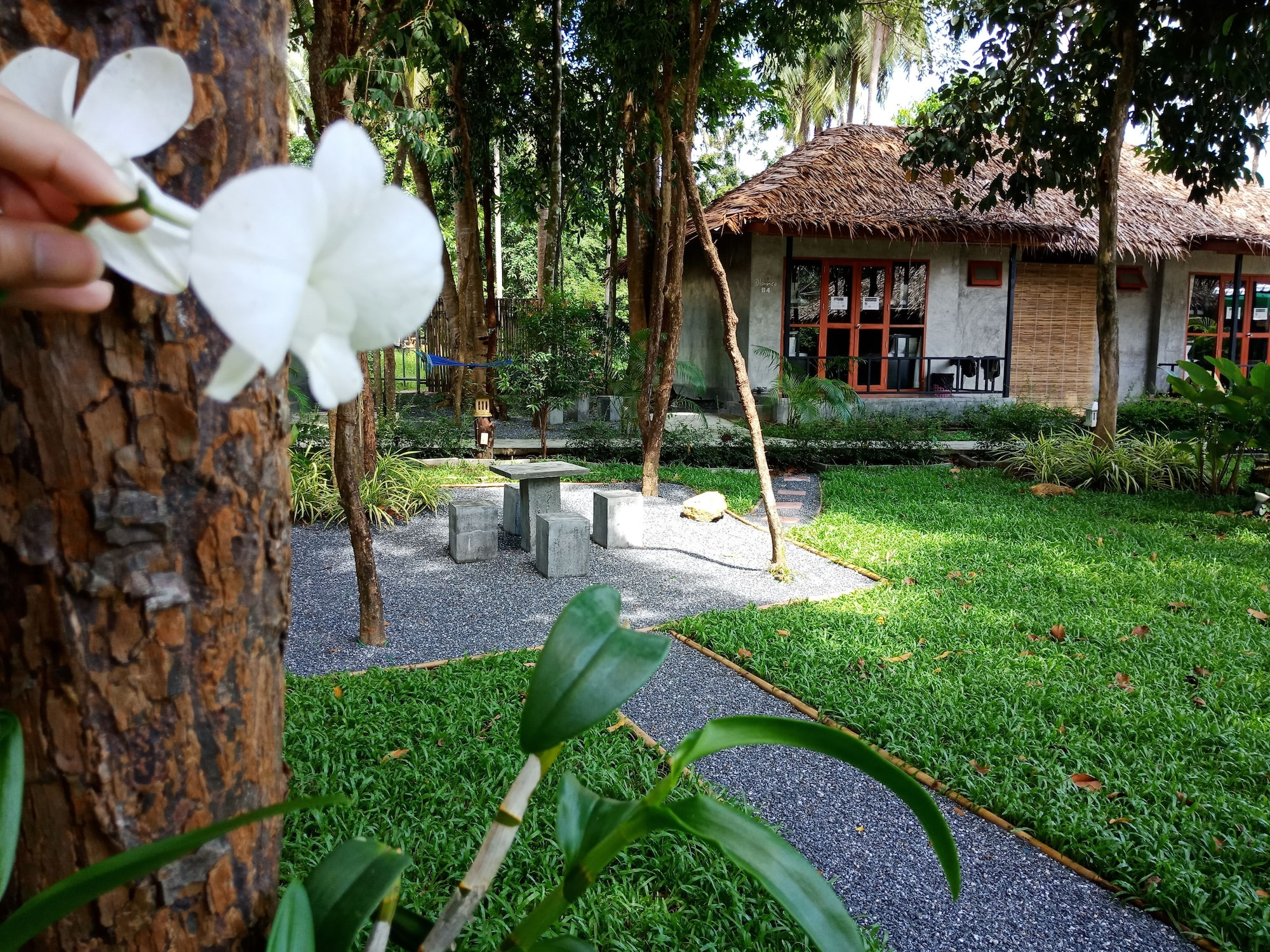 Blanco Hostel at Lanta, Ko Lanta