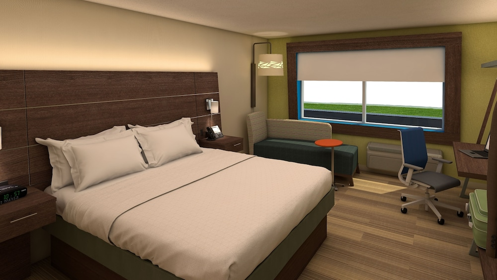 Suite, 1 King Bed with Sofa bed, Accessible, Non Smoking (Roll-In Shower)