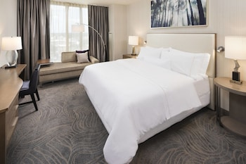 Room, 1 King Bed