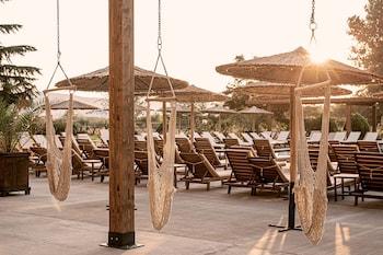 Aronia Beach