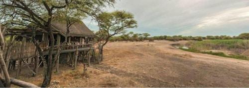 Onguma Bush Camp, Guinas