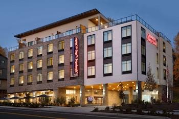 西雅圖蘭頓歡朋套房飯店 Hampton Inn and Suites Seattle/Renton
