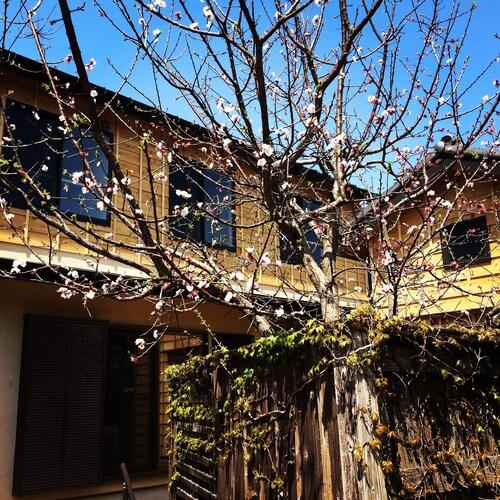 Guest House Kamakura ZEN-JI - Hostel, Kamakura
