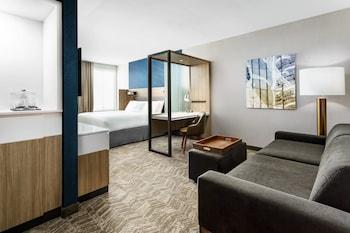 貝爾蒙紅木海岸萬豪春季山丘套房飯店 SpringHill Suites by Marriott Belmont Redwood Shores