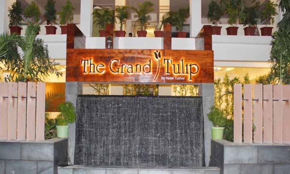 The Grand Tulip