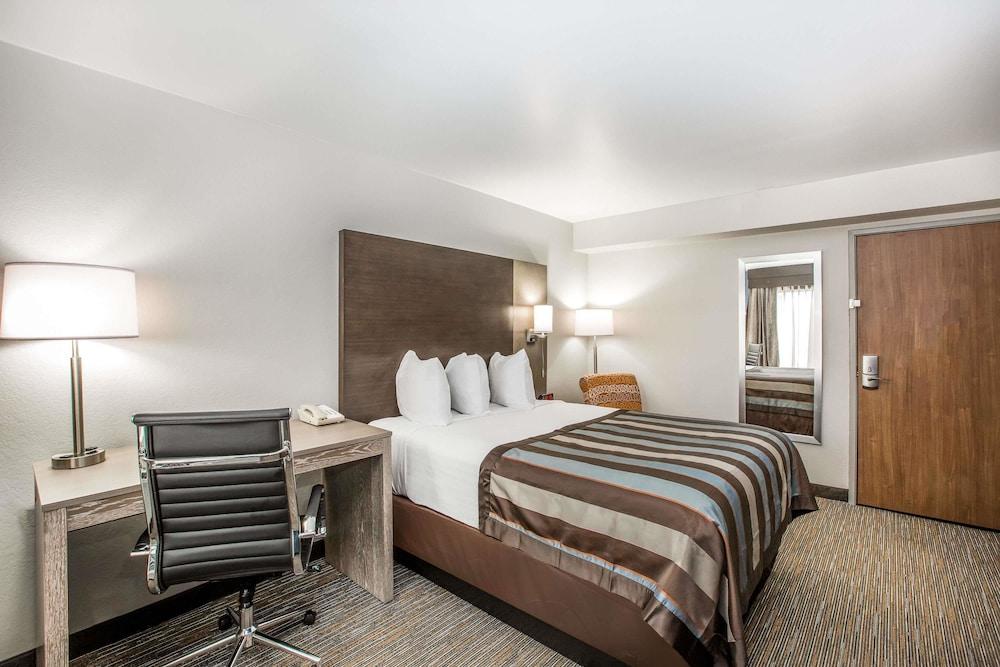 윈게이트 바이 윈덤 루이빌 페어 앤드 엑스포(Wingate by Wyndham Louisville Fair and Expo) Hotel Image 22 - Guestroom