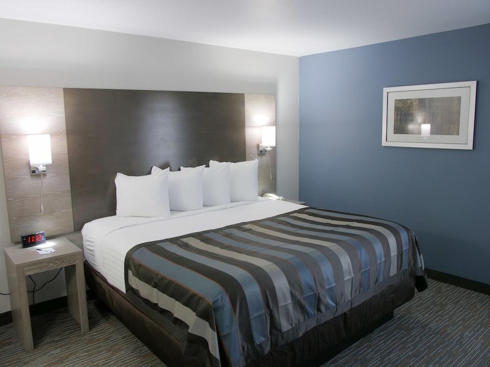 윈게이트 바이 윈덤 루이빌 페어 앤드 엑스포(Wingate by Wyndham Louisville Fair and Expo) Hotel Image 20 - Guestroom