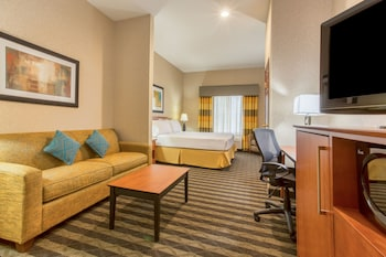 Suite, 1 King Bed with Sofa bed, Accessible (Comm, Tub)