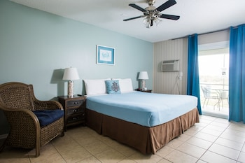 Standard Room, 1 King Bed, Patio, Park View (Dog Friendly)