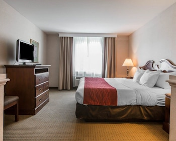 Hotel - Comfort Inn & Suites East Greenbush - Albany