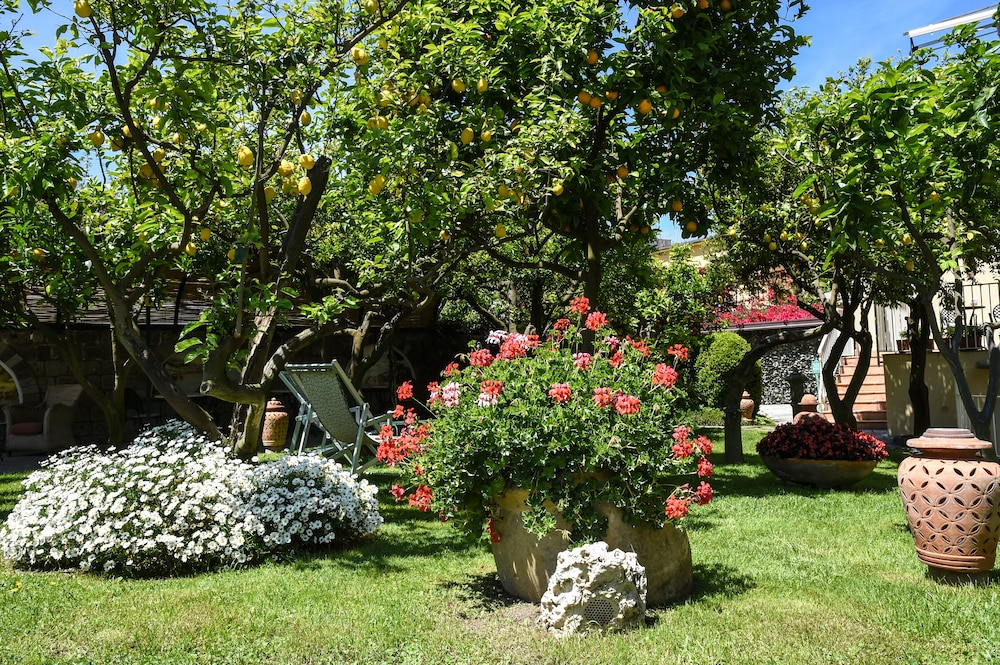 호텔 안티체 무라(Hotel Antiche Mura) Hotel Image 100 - Garden