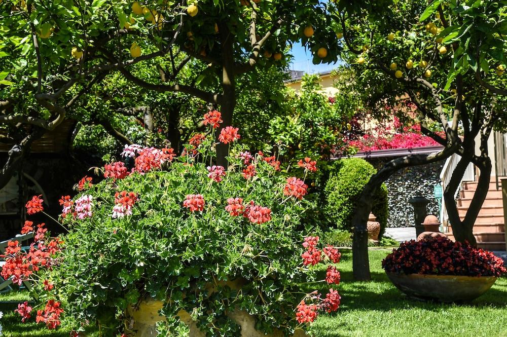 호텔 안티체 무라(Hotel Antiche Mura) Hotel Image 98 - Garden