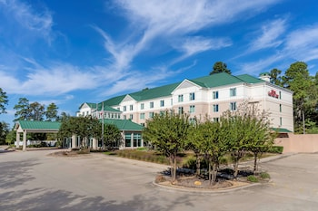 伍德蘭/希爾頓花園飯店 Hilton Garden Inn Houston / The Woodlands