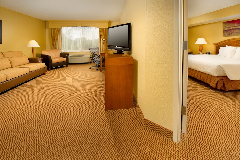 Suite, 1 King Bed, Accessible (Mobility & Hearing)