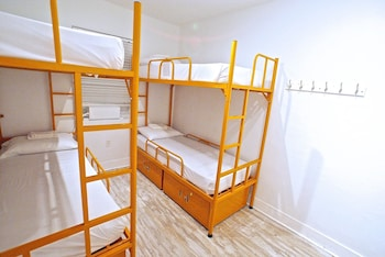 4 Bed Mixed Dorm (Shared Bath)