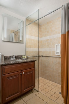 Studio, 1 King Bed, Accessible, Kitchenette (Roll-in Shower)
