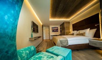 Premium Chic Room