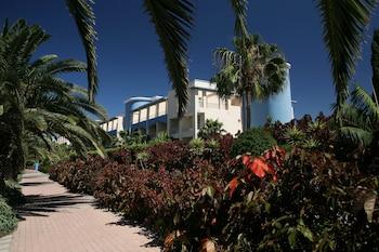 Hotel - IFA Altamarena Hotel