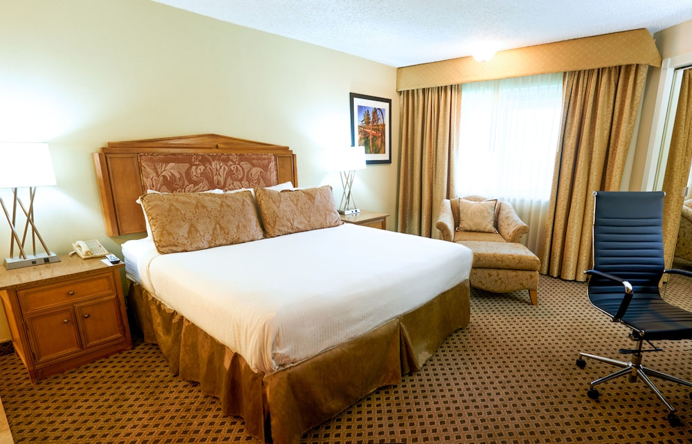 파크웨이 플라자 호텔 & 컨벤션 센터(Parkway Plaza Hotel & Convention Center) Hotel Image 10 - Guestroom