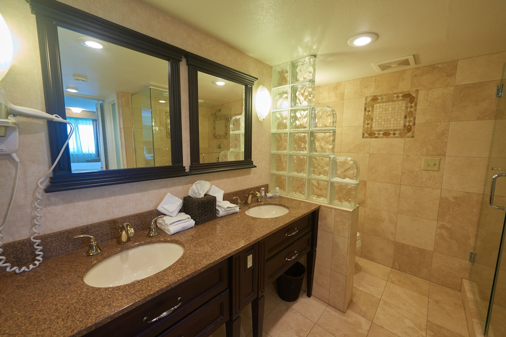 파크웨이 플라자 호텔 & 컨벤션 센터(Parkway Plaza Hotel & Convention Center) Hotel Image 21 - Bathroom