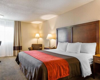 莫瑞諾谷近馬奇空軍儲備基地凱富飯店 Comfort Inn & Suites Moreno Valley near March Air Reserve Base