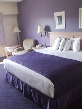 Standard Room, 1 King Bed, Park View