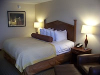 Executive Room, 1 King Bed (Pets Not Allowed)