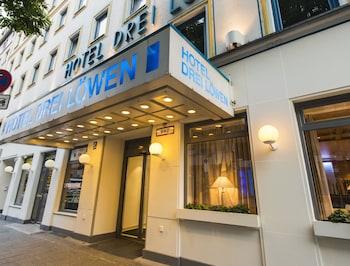 德雷勞文飯店 Drei Löwen Hotel