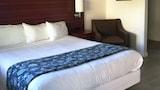 Walnut Creek Hotels