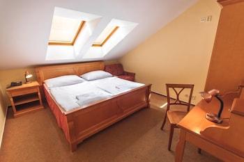 Hotel - Pension Brezina Prague