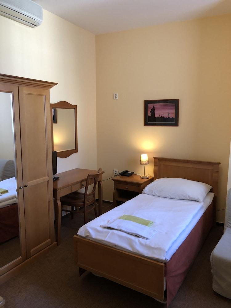 ペンション ブジェジナ プラハ