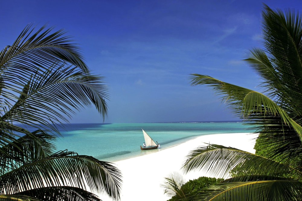 벨라사루 몰디브(Velassaru Maldives) Hotel Image 76 - Beach