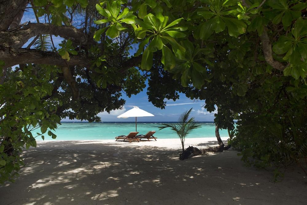 벨라사루 몰디브(Velassaru Maldives) Hotel Image 19 - Guestroom