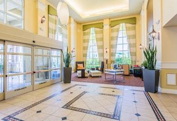 Cityhotels.com