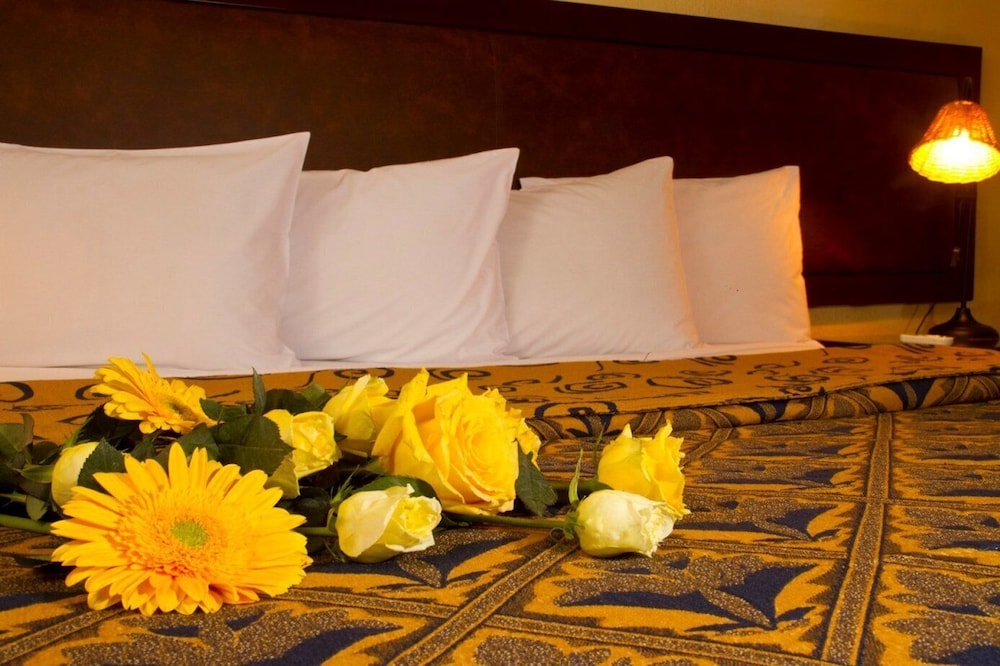 https://i.travelapi.com/hotels/2000000/1160000/1156100/1156088/f654a934_z.jpg