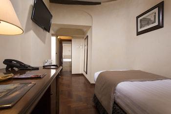 Comfort Single Room, Terrace