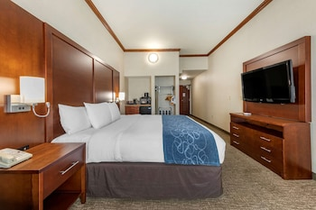 Room, 1 King Bed, Accessible, Non Smoking (Roll In Shower)