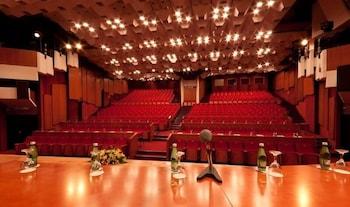 그랜드 호텔 아드리아틱 I(Grand Hotel Adriatic I) Hotel Image 43 - Meeting Facility