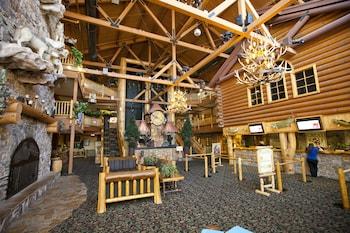 Great Wolf Lodge Kansas City photo