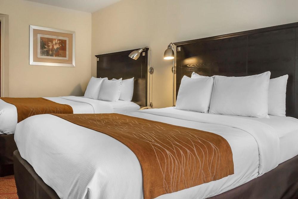 컴포트 인 & 스위트 라과디어 에어포트(Comfort Inn & Suites LaGuardia Airport) Hotel Image 6 - Guestroom