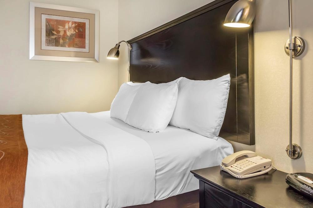 컴포트 인 & 스위트 라과디어 에어포트(Comfort Inn & Suites LaGuardia Airport) Hotel Image 7 - Guestroom