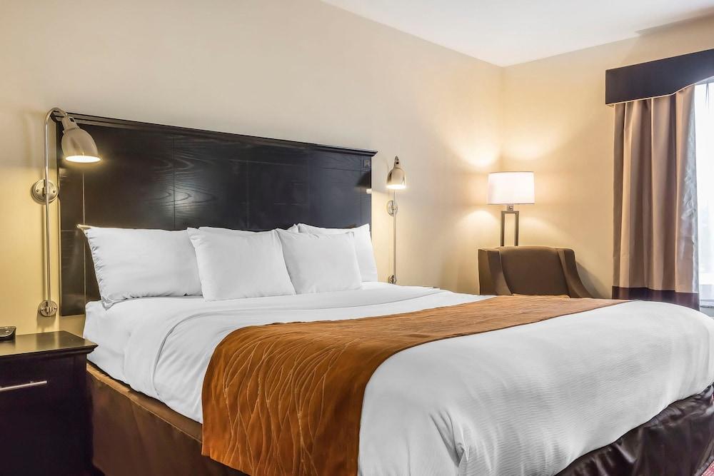 컴포트 인 & 스위트 라과디어 에어포트(Comfort Inn & Suites LaGuardia Airport) Hotel Image 8 - Guestroom