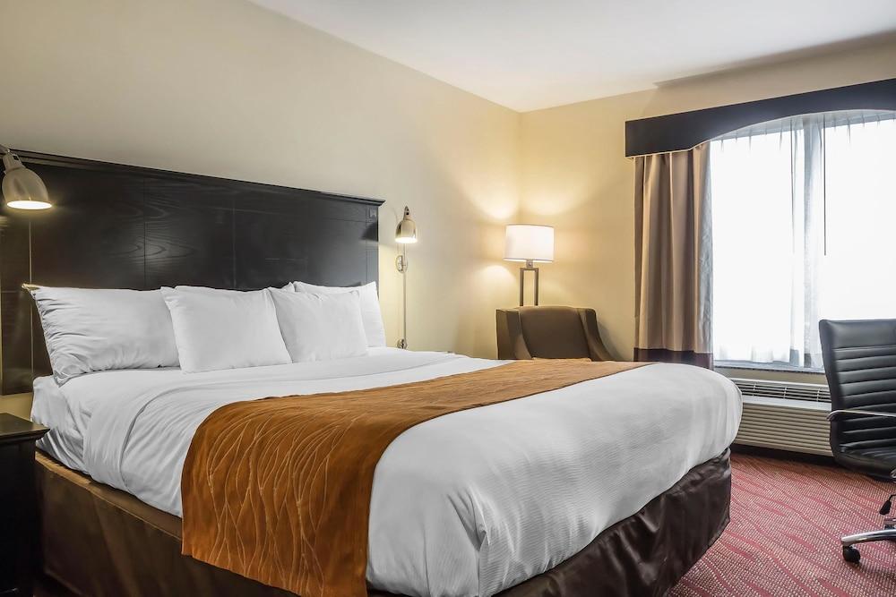 컴포트 인 & 스위트 라과디어 에어포트(Comfort Inn & Suites LaGuardia Airport) Hotel Image 9 - Guestroom