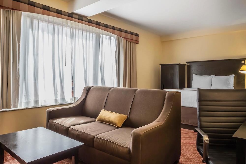 컴포트 인 & 스위트 라과디어 에어포트(Comfort Inn & Suites LaGuardia Airport) Hotel Image 10 - Guestroom