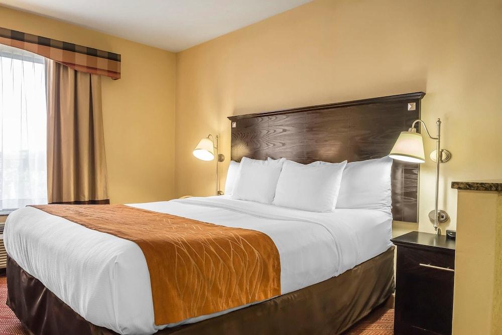 컴포트 인 & 스위트 라과디어 에어포트(Comfort Inn & Suites LaGuardia Airport) Hotel Image 12 - Guestroom