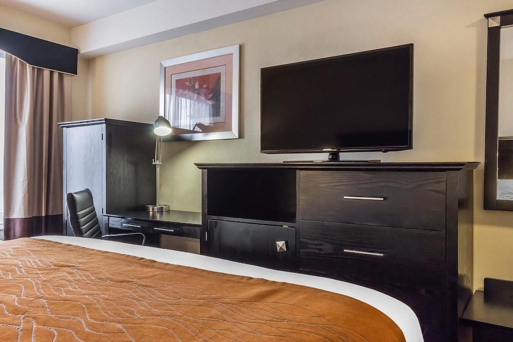 컴포트 인 & 스위트 라과디어 에어포트(Comfort Inn & Suites LaGuardia Airport) Hotel Image 13 - Guestroom